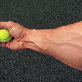 Unterarme Trainieren